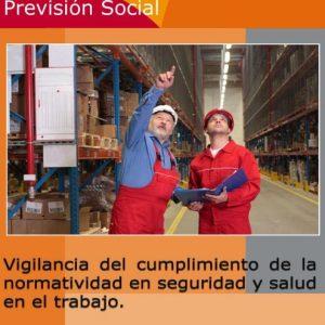 SECRETARIA DEL TRABAJO Y PREVISIÓN SOCIAL